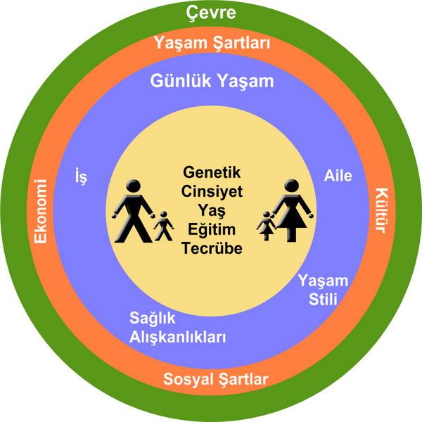 Şekil 23 sağlık ile sosyal kültürel ve çevre özellikleri