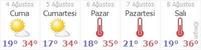 Muş 5 günlük hava durumu